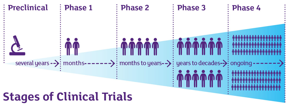 phase 1 clinical studies